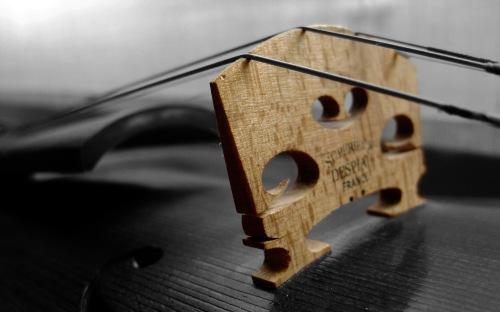 violin_2560x1600